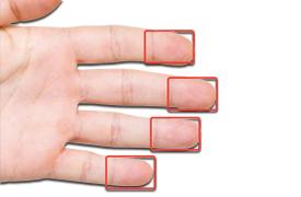 Fingerprint_Biometrics-1